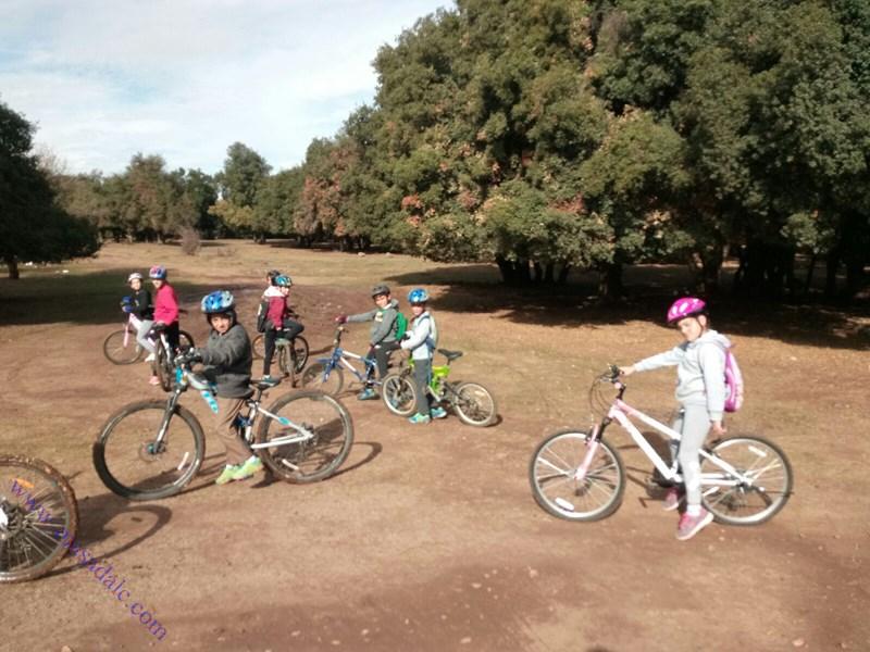 دورة دراجات هوائية