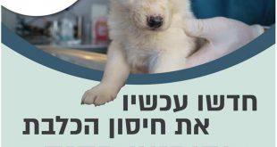 חידוש חיסון הכלבת